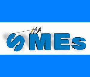 Understanding the SME mindset