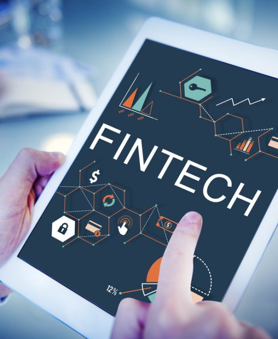 Fintech's double-edged sword