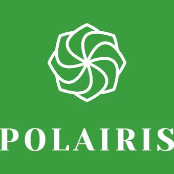 Australian FinTech company LENSELL launches Polairis