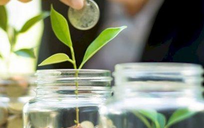 Raiz Invest investment portfolios stay ahead of their benchmarks