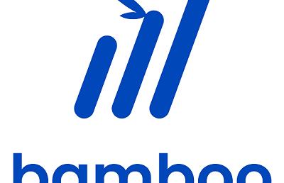 Bamboo makes three key hires from tech giants Xero, Acorns and Spaceship