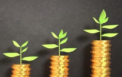 Plenti delivers 140% year-on-year growth, brings forward profitability